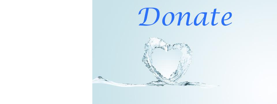Donate or Volunteer